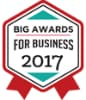 2017 BIG Awards for Business logo