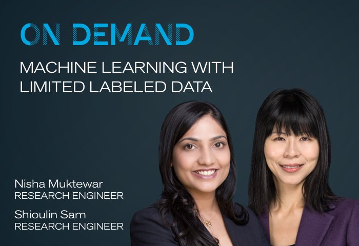 On Demand: Machine Learning with Limited Labeled Data