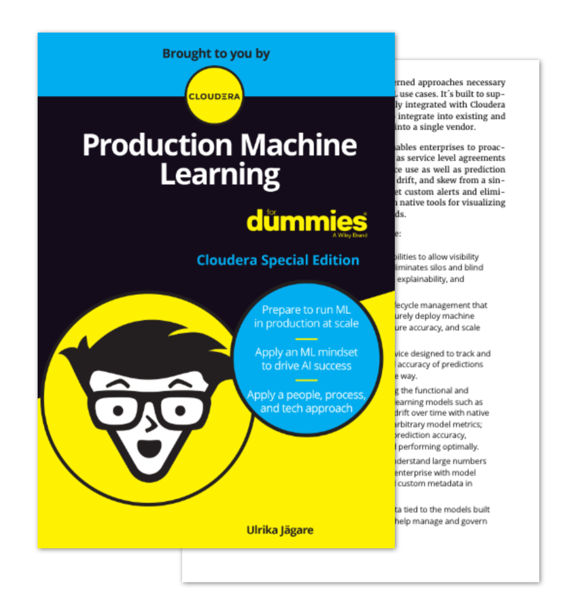 Thumbnail of production machine learning for dummies